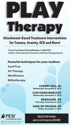 Play Therapy: Attachment-Based Treatment Interventions for Trauma, Anxiety, OCD and More!