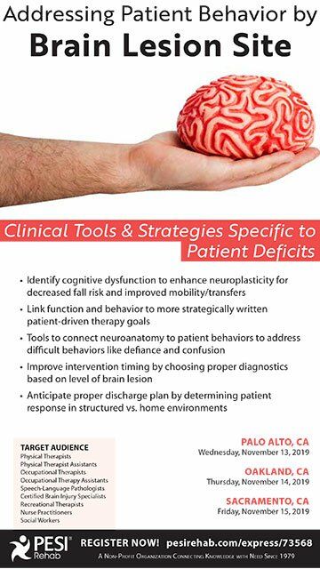 Addressing Patient Behavior by Brain Lesion Site: Clinical Tools & Strategies Specific to Patient Deficits
