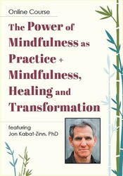 The Power of Mindfulness as Practice + Mindfulness, Healing and Transformation