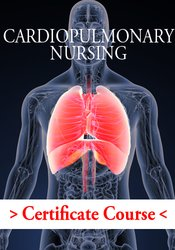 Image of Cardiopulmonary Nursing Certificate Course