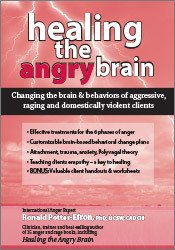 Healing the Angry Brain: Changing the Brain & Behaviors of Aggressive, Raging & Domestically Violent Clients