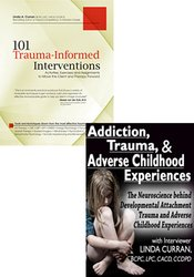 Adverse Childhood Experiences (ACES) Study Bundle