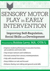 Sensory Motor Play in Early Intervention: Improving Self-Regulation, Social Skills and Development