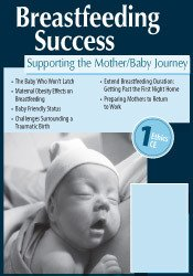 Breastfeeding Success: Supporting the Mother/Baby Journey