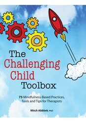 Image of The Challenging Child Toolbox: 75 Mindfulness-Based Practices, Tools a