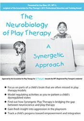 Image of The Neurobiology of Play Therapy: A Synergetic Approach