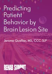 Image of Predicting Patient Behavior by Brain Lesion Site