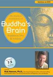 Image of Buddha's Brain: The Practical Neuroscience of Happiness, Love and Wisd