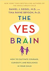 Image of The Yes Brain