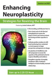 Image of Enhancing Neuroplasticity: Strategies for Rewiring the Brain
