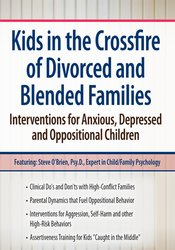 Image of Kids in the Crossfire of Divorced and Blended Families: Interventions