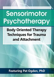 Sensorimotor Psychotherapy: Body Oriented Therapy Techniques for Trauma and Attachment 1