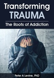 Transforming Trauma: The Roots of Addiction 1