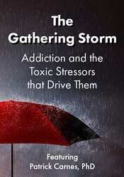 The Gathering Storm: Addiction and the Toxic Stressors that Drive Them 1