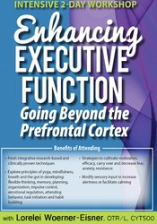 Image of Intensive Workshop: Enhancing Executive Function: Going Beyond the Pre