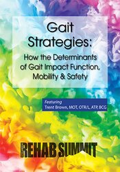 Gait Strategies: How the Determinants of Gait Impact Function, Mobility & Safety
