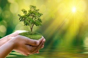 Can Therapists Help Save the Planet?