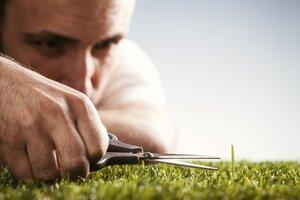 November Quandary: How Do I Bring Up My Client's Rigid Perfectionism?