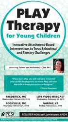 Play Therapy for Young Children: Innovative Attachment-Based Intervent