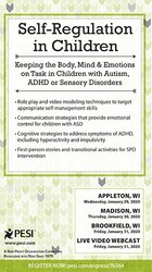 Image of Self-Regulation in Children: Keeping the Body, Mind and Emotions on Ta