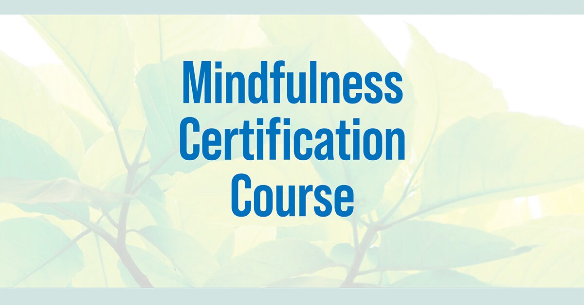2-Day Intensive Training: Mindfulness Certification Course 2