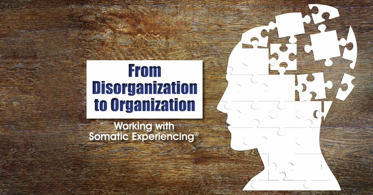 From Disorganization to Organization: Working with Somatic Experiencing® 2