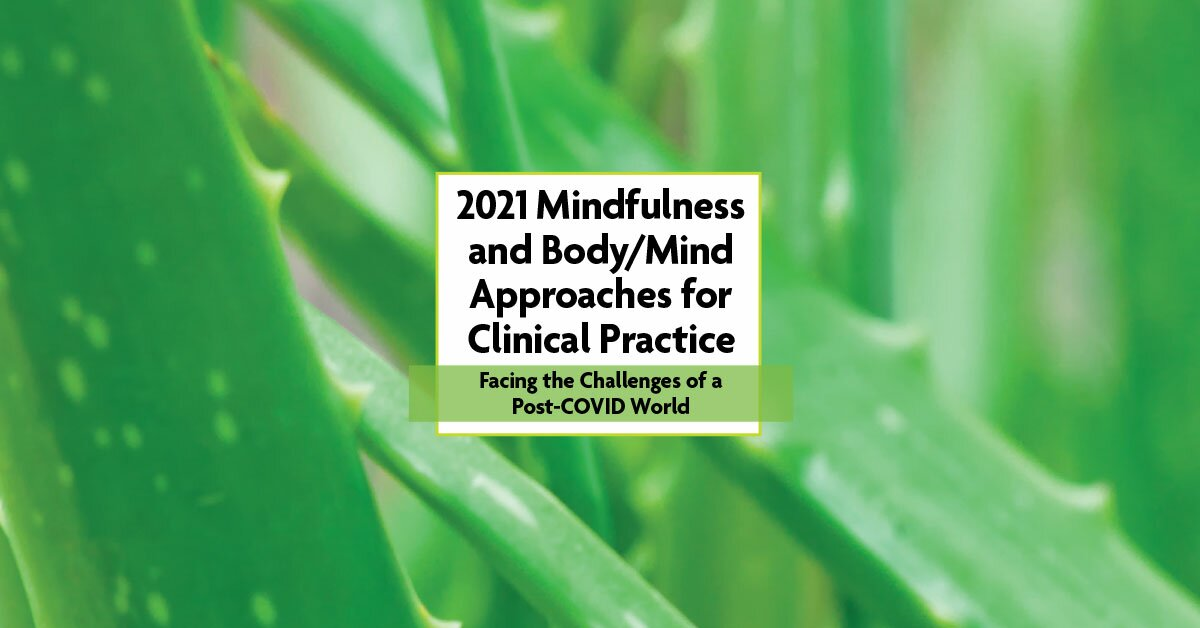 4-Day Online Retreat: 2021 Mindfulness and Body/Mind Approaches for Clinical Practice: Facing the Challenges of a Post-COVID World 2