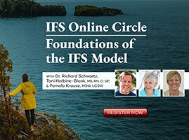 Learning IFS Has Never Been Easier...