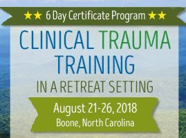 6 day certificate program clinical trauma trainin